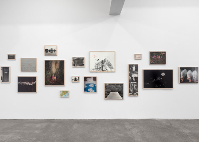 Paula Cooper Gallery Presents Sophie Calle, Bruce Conner, Paul Pfeiffer