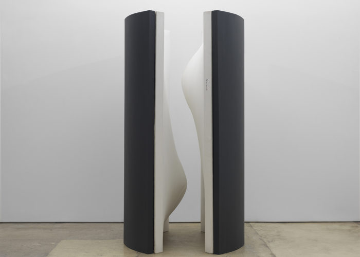 Galerie Lelong Presents Eros by Zilia Sánchez