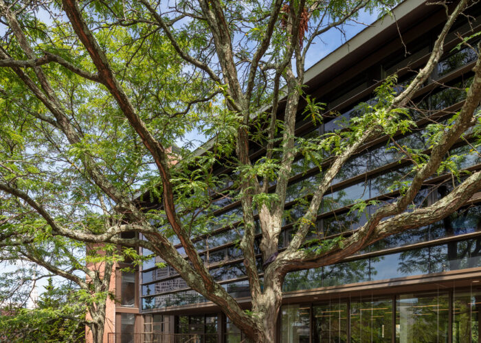 RISD Completes Quad Block Enhancement Project with Reopening of Homer and South Hall Residences